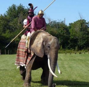 Elephant de guerre